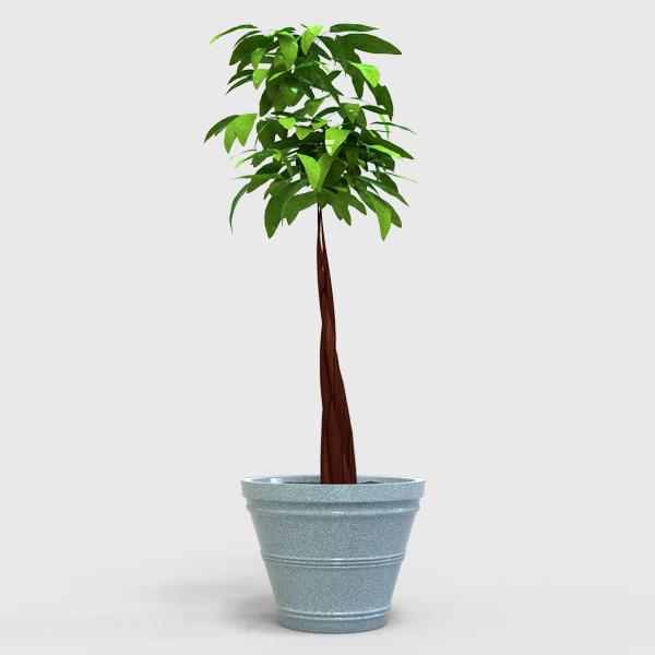 DESCRIPCIÓNEsta fabricada de polietileno de media densidad, mediante el proceso de inyección por lo que permite fabricar todo el cuerpo en una sola pieza, sin partes remachadas, esto ayuda a evitar puntos de tensión o fragilidad que pueden afectar su resistencia lo cual se ve reflejado durante el uso.Altamente resistente a las condiciones del clima.Protección contra los rayos UV.Con o sin recubrimiento.FUNCIONALIDADLa Maceta Cónica le permite mantener las plantas sin regar por más tiempo.Ideal para cualquier espacio donde se quiera exhibir una planta ya sea un lugar abierto o cerrado.De gran uso en plazas, jardines, azoteas verdes, hogares, oficinas, etc.CARACTERÍSTICASCOLORES: Blanco Granito, Barro y Cafe Oscuro.ALTO: 96.0 cm.DIÁMETRO: 130.0 cm.